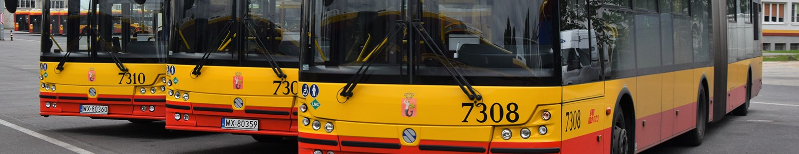 buses in parking lot
